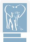 Elefanten Foto Lexikon